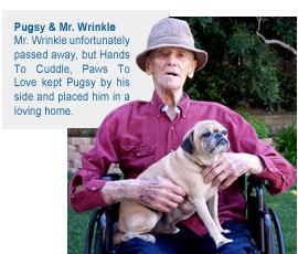 Mr Wrinkle